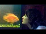 Рыбка целуется. )))